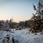 Winter in Goritschach 1